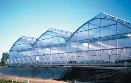 Arch Series 6500 Greenhouse