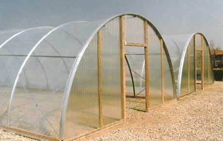 Cold Frame CF 1000 Greenhouse