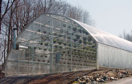 Economy Starter Greenhouse Package